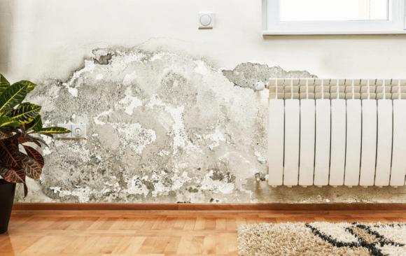 Problemas de humidade em casa? As 5 principais causas e formas de resolver